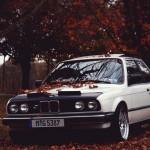 En otoño protege la pintura de tu coche